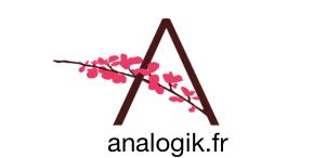 Agence SEO Analogik